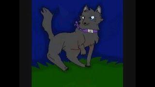 Biship the wolf animation vid