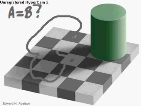 The Checkerboard Illusion