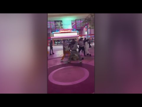 Brawl At River Park Shopping Center Has Come Concerned About Safety
