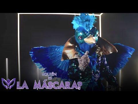 ¿Quién es Quetzal?   ¿Quién es La Máscara?   11 de octubre por @Las Estrellas