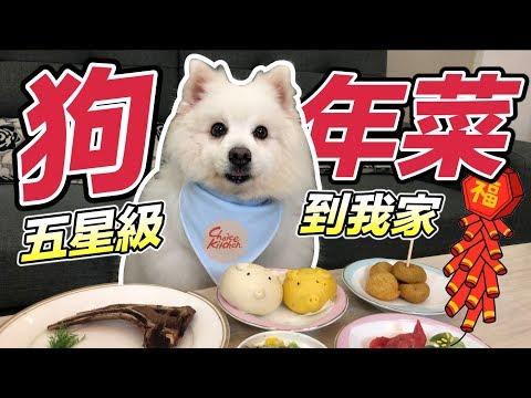 狗的五星級年菜『咪咪會喜歡嗎?』