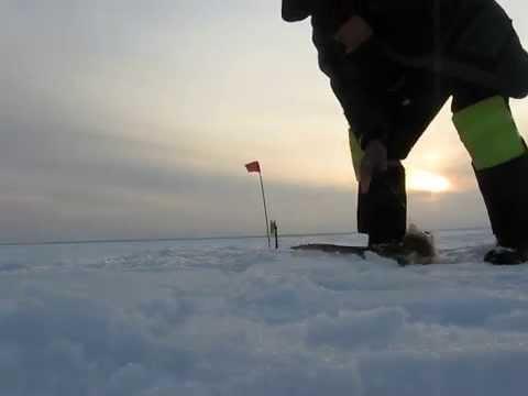 рыбалка в пермском крае на жерлицы