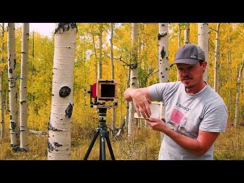 Intrepid mk3 4x5 Camera Review