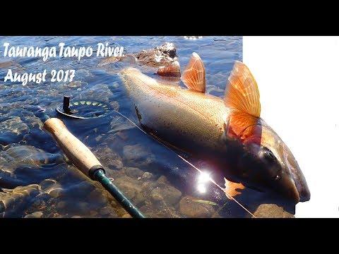 Tauranga-Taupo River - August 2017