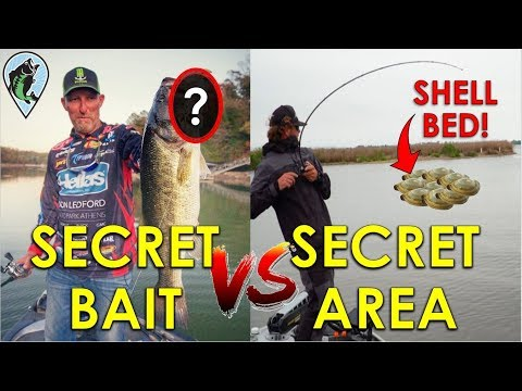 Which Is Better: Secret Bait Or Secret Area? | Bass Fishing Insight