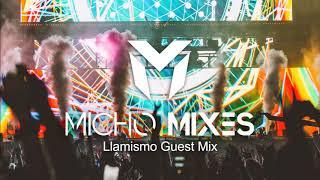 Best Electro & Dance House Mix 2019 | EDM Festival Party Music Mix