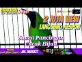 Suara Pancingan Burung Cucak Hijau Cucak Ijo Sniper Mr Harieezt Fold Cocak Hijau Cocak Ijo  Mp3 - Mp4 Download