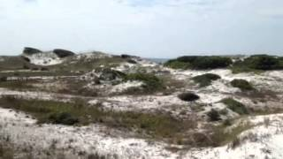Secluded Beach on 30A