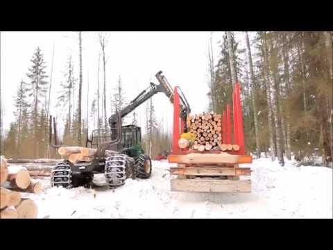 Лесовоз MEGA на делянке в Вологодской области. Timber Truck  In The Vologda Region, Russia