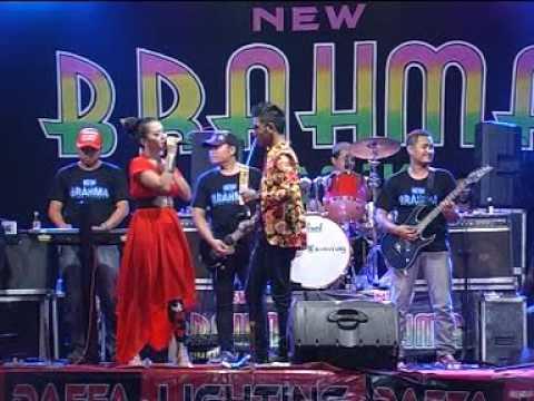 NEW BRAHMA @ CINCIN KAWIN # GERRY & RENA KDI
