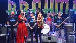 Download Lagu Dangdut Koplo Cincin Kawin