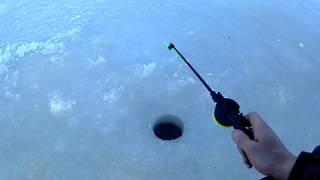 Наша первая зимняя рыбалка