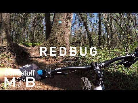 Mountain Biking Redbug Trail in Tallahassee, FL