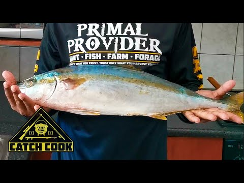 Exciting shark fishing rewarded with yellowtail cook, catch cook, Strandfontein, RSA