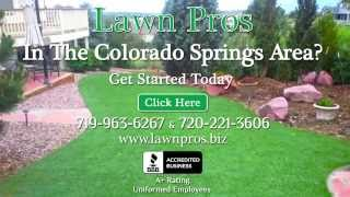 Astro Turf Putting Greens Artificial Dog Grass Installation Colorado Springs Co Call 719.963.6267