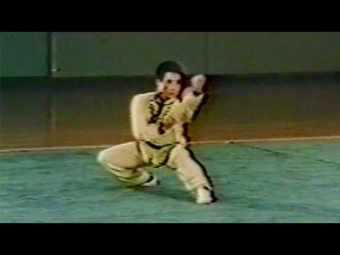 【武術】1976 高西安 (翻子拳) / 【Wushu】1976 Gao Xi'an (Fangziquan)