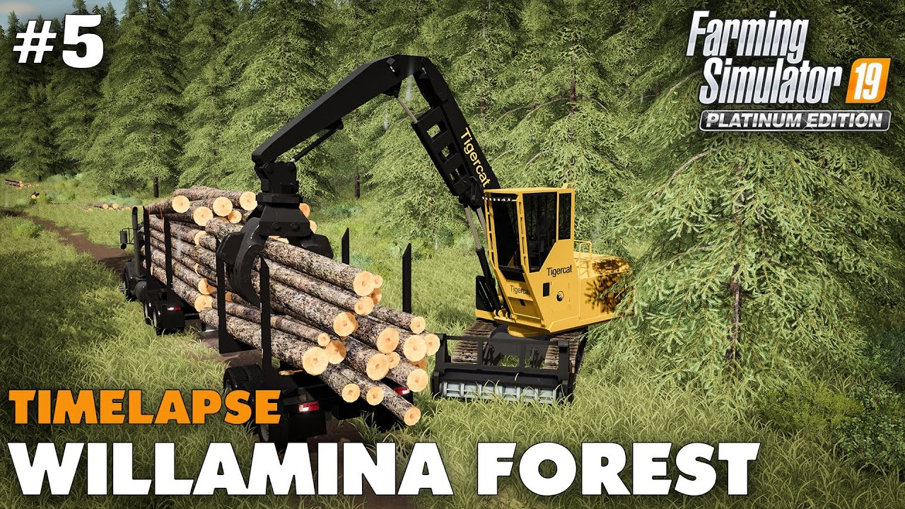 Willamina Forest Timelapse #5 Cutting, Loading & Hauling, Farming Simulator 19 Seasons