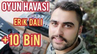 Halil Durmuş - Erik dalı gevrektir 2017