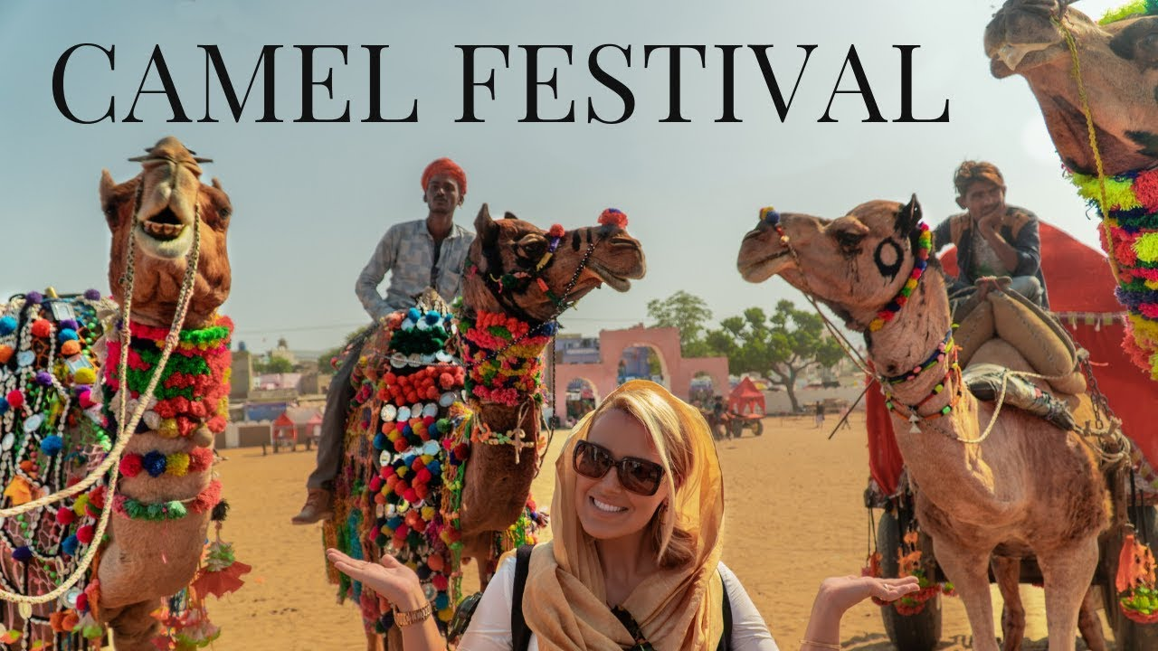 Image result for Pushkar Camel Fair