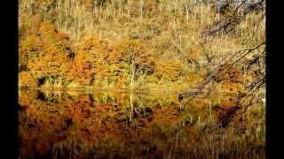 Reflets sur le lac de barrage de la Roche-aux-Moines