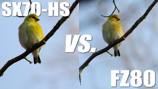 Canon SX70-HS vs. Panasonic FZ80 4K Video Quality Comparison