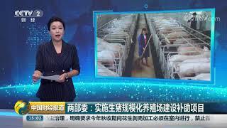 [中国财经报道]两部委:实施生猪规模化养殖场建设补助项目  CCTV财经