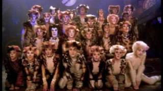The Naming of the Cats - HD, from the Cats film