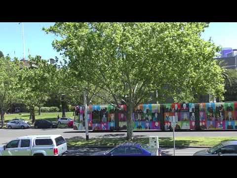 Melbourne Art tram St Albans Heights Primary School's Community Hub D2 5002 St Kilda Rd