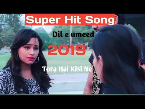 new-song-2019-super-hit-song-dil-e-umeed-tora-hai-kisi-ne-|-singer-talha-baloch