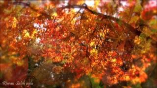 Гармония музыки и природы - Осень. (Чайковский. Времена года.)