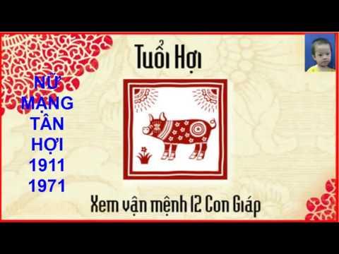 Tử vi trọn đời Tân Hợi – Nữ mạng sinh năm: 1911, 1971 và 2031