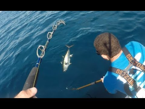 NJ Yellowfin Tuna Fishing - As Good As It Gets!