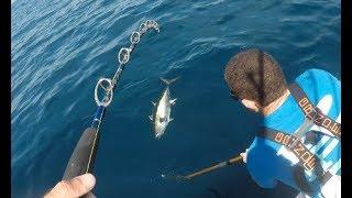 NJ Yellowfin Tuna Fishing - As Good as it Gets!