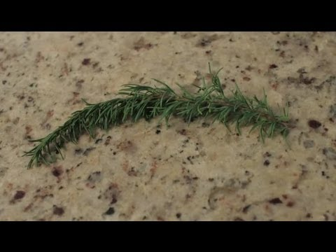 Homemade Remedies for Treatment of Hair Loss : Herbal Remedies