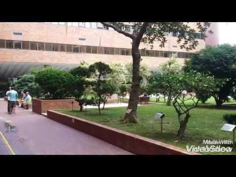 Hong Kong Polytechnic University review! Гонконгский Политех обзор!
