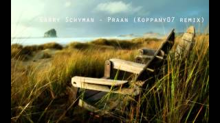 Garry Schyman - Praan ( Koppany07 remix )