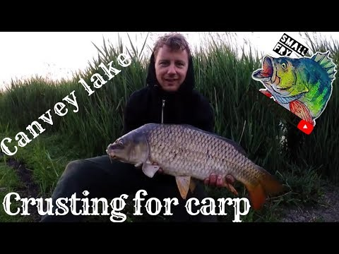 Canvey Lake Crusting For Carp