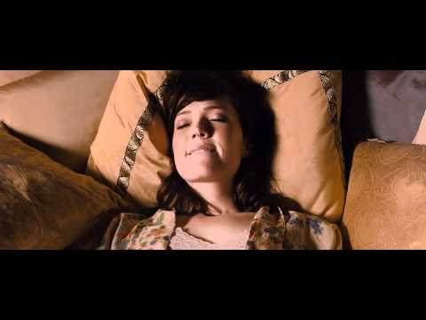 Swinging With The Finkels 2010 BRRiP XViD AC3   SAMPLE