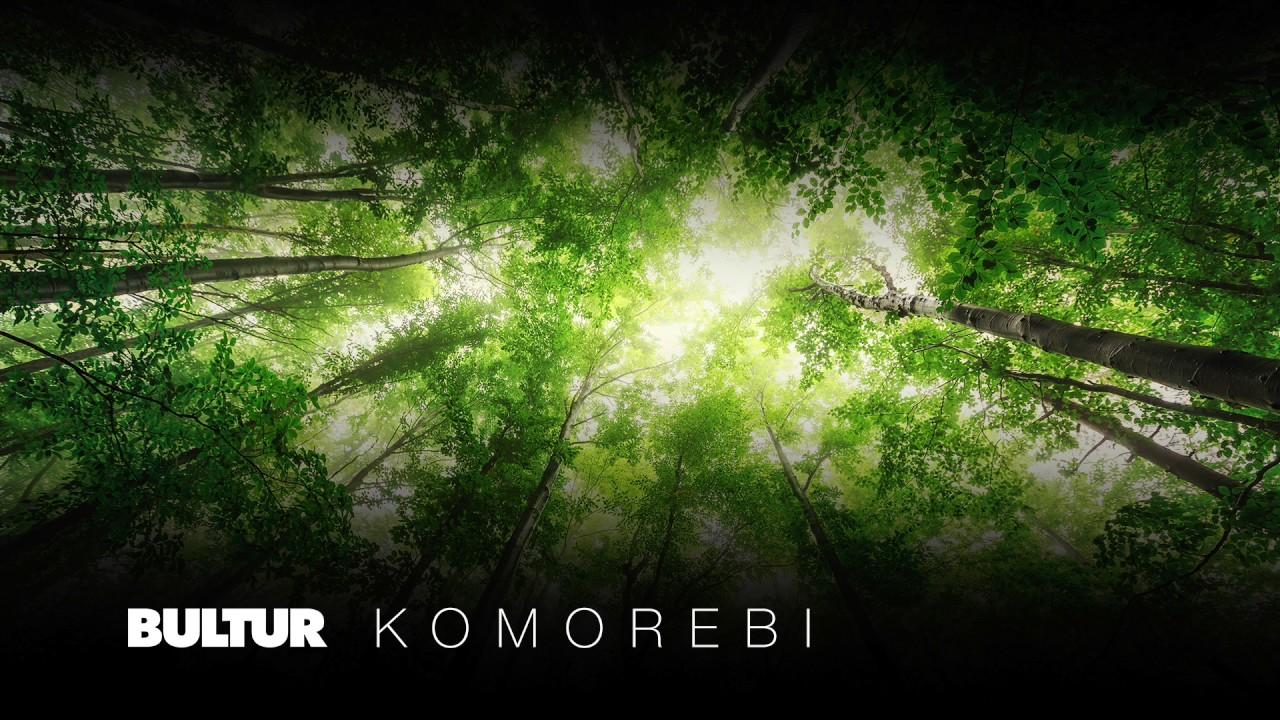 Kết quả hình ảnh cho Komorebi