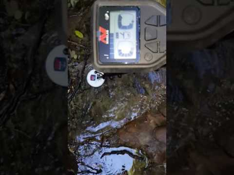 Minelab gold monster 1000 vlf sensitivity - популярное видео.