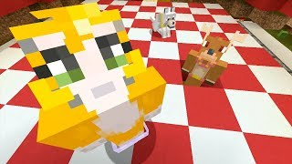 Minecraft Xbox - Changing Floor [613]