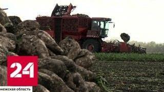 видео Развитие аграрного сектора экономики