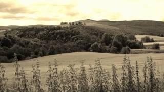 Comfortably Numb Pink Floyd Instrumental Version HD
