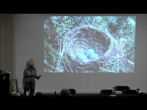 IVLA 2014 Keynote: Lynell Burmark