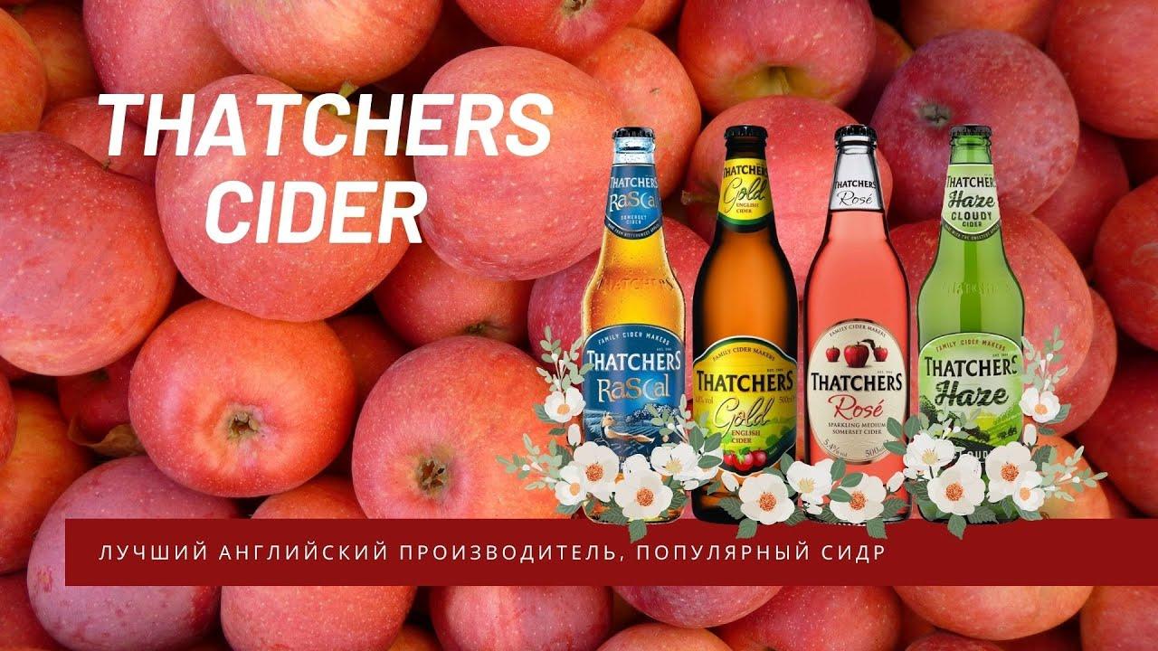 Сидрерия Thatchers Cider - лучший английский производитель, популярный сидр, Haze Cider / MF