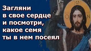 Стоит человеку изменить свое сердце, меняется и его судьба! - Николай Сербский