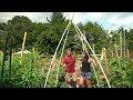 Vegetable Garden Trellising Options with Gary & CaliKim: Blooper Reel (at end) & Active Trellising!