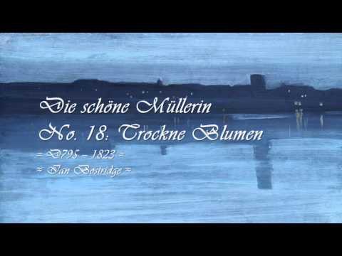 Franz Schubert ~ Complete Lieder {c. 1810-28} ~ Selections from the Hyperion Schubert Edition