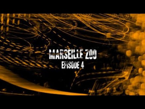 Marseille Zoo Final Section | TransWorld SKATEboarding