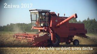 Żniwa 2017 l Disco Polo l Bizon w Upale l Pszenica, Jęczmień, Owies, Pszenżyto